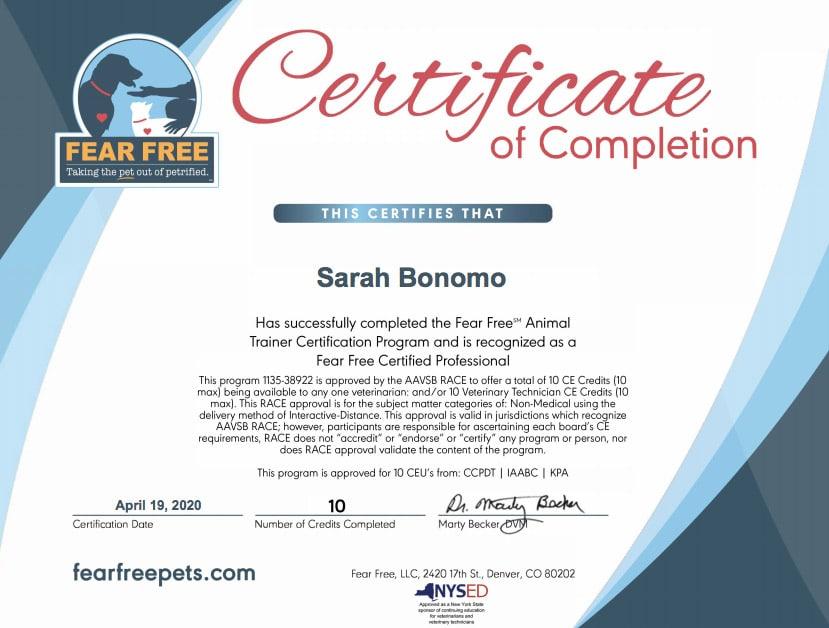 fear free training certificate